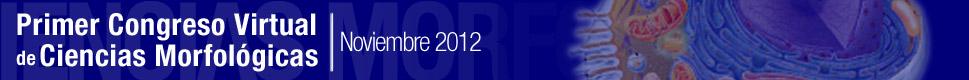 Morfovirtual 2012